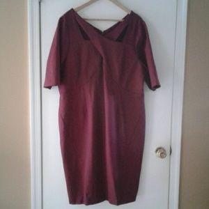 Lane Bryant NWOT Dress